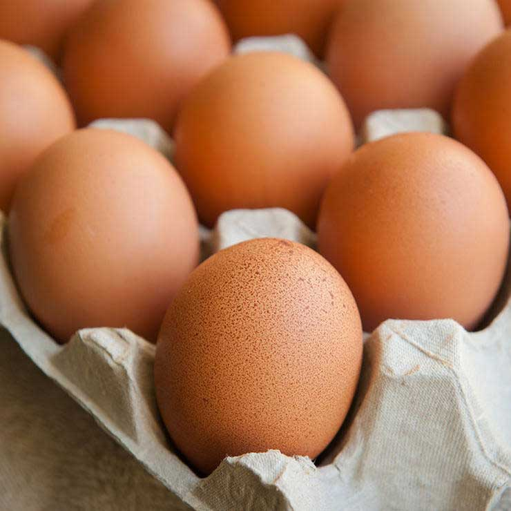 shutterstock eggs food to satisfy hunger